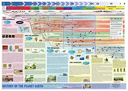 History of the Planet Earth (giant)