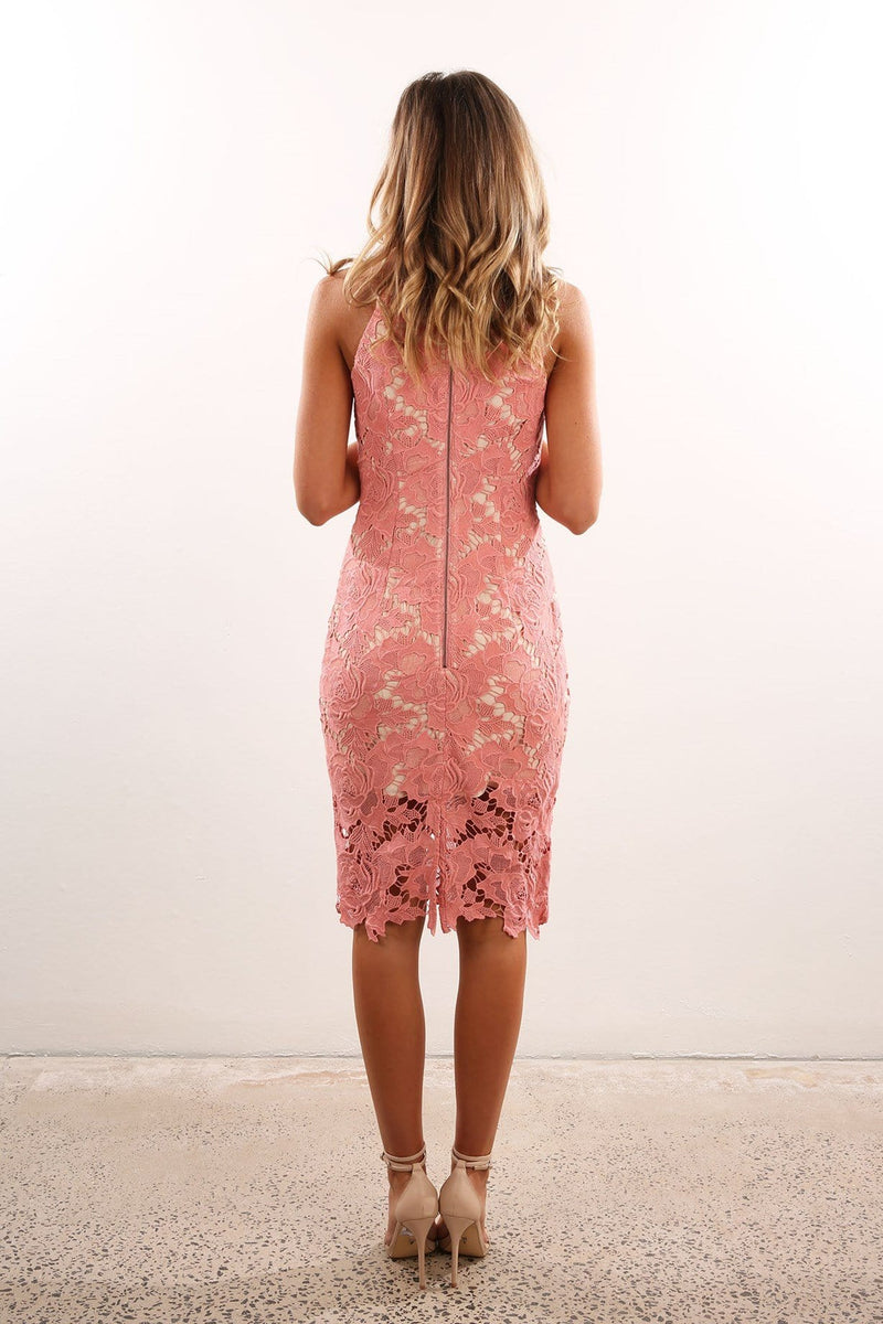 Lonely Lover Lace Dress Rose Keepsake - Jean Jail