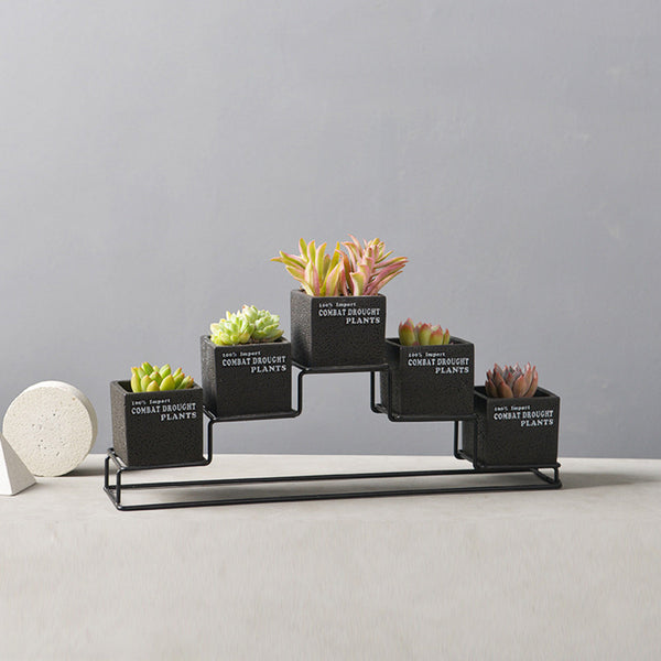 5pcs Cement Succulent Planter Pots Square Flower Pot Flower Planter with One Iron Metal Shelf - King City Treasures