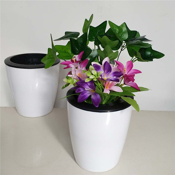 3pcs Self Watering Mini Planter Pots - King City Treasures