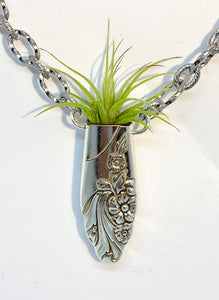 """Evening Star"" Air Plant Necklace"