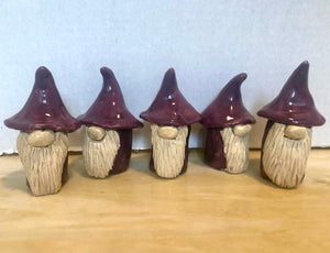Purple Gnomes