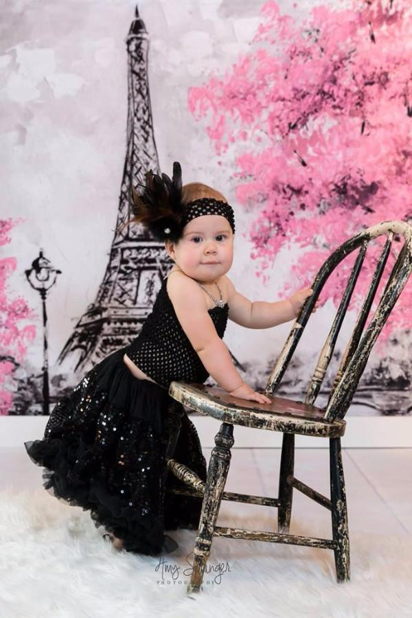 Load image into Gallery viewer, Katebackdrop:Kate Red Flower Tree Hand Painting Children Backdrop Eiffel Tower Paris