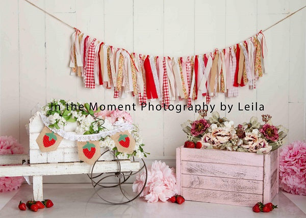Strewberry Pink Decorations Summer Backdrop