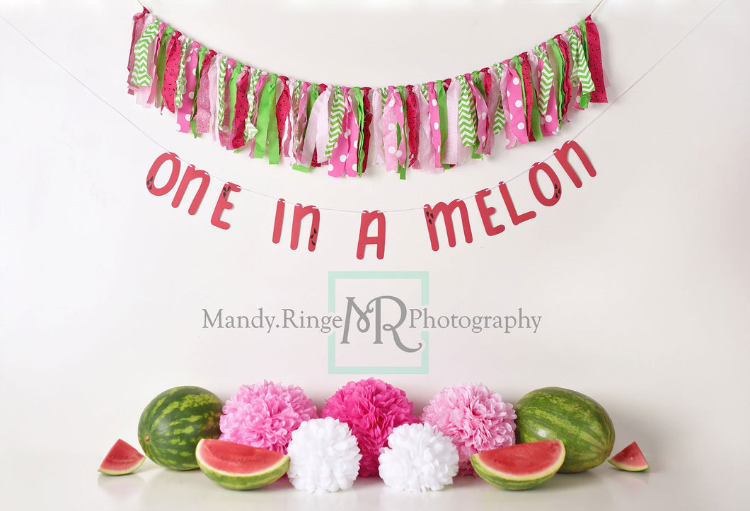 Kate Summer One in A Melon First Birthday Backdrop for Photography Designed by Mandy Ringe Photography