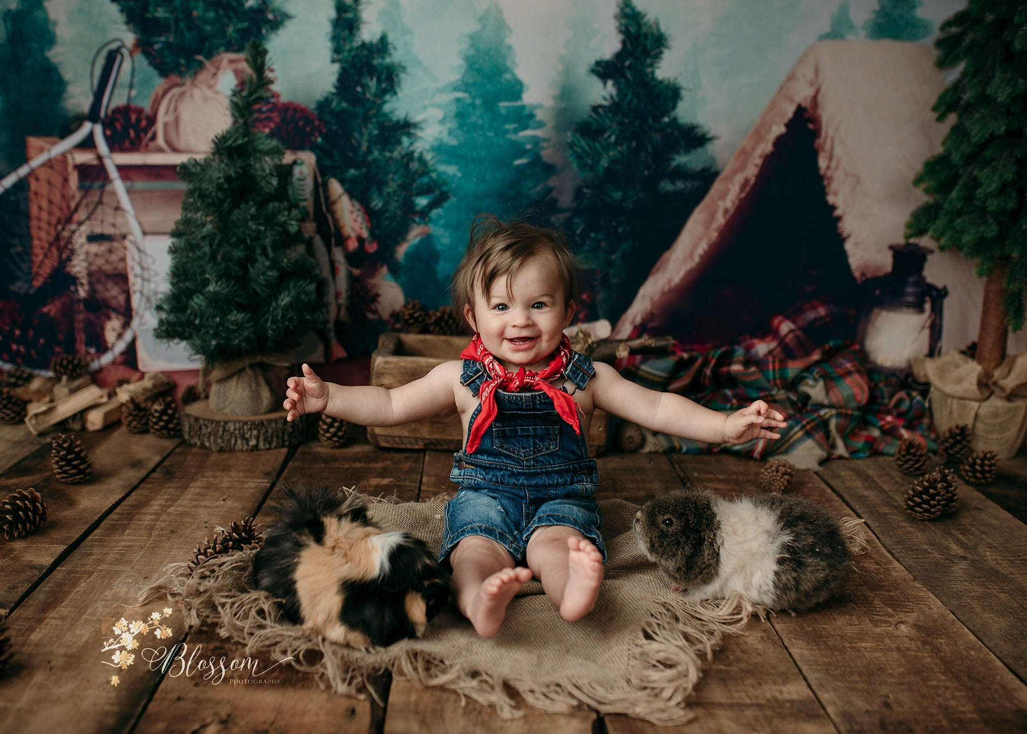 Load image into Gallery viewer, Kate Forest Camping Children Backdrop for Photography Designed by Megan Leigh Photography