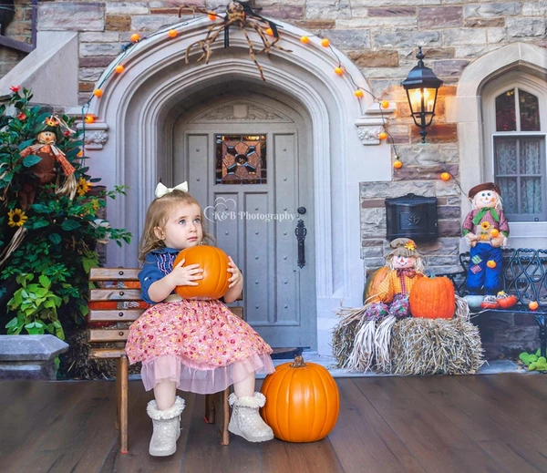Load image into Gallery viewer, Kate Autumn Halloween house door backdrop