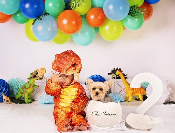 Kate Dinosaur Birthday with Balloons Backdrop for Photography Designed By Mandy Ringe Photography