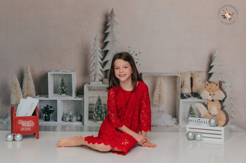 Kate Christmas Elegant Winter Display Backdrop for Photography Designed By Mandy Ringe Photography