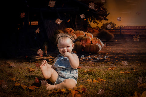 Kate Autumn Harvest Pumpkins Sunset Fallen Leaves Backdrop for Photography