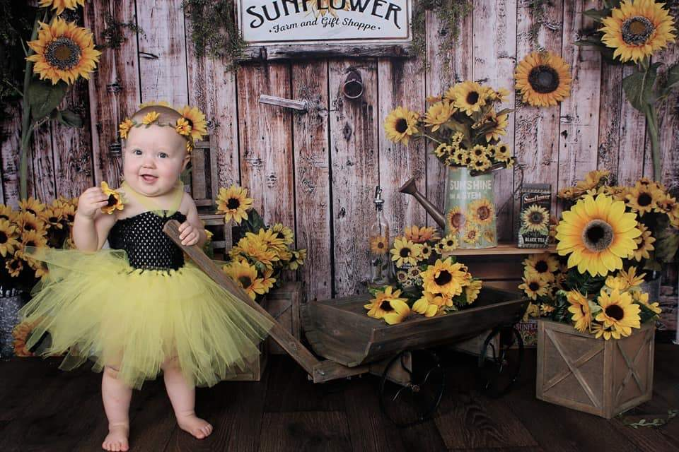 Kate Summer Sunflower Gift Shop Wood Fall Backdrop