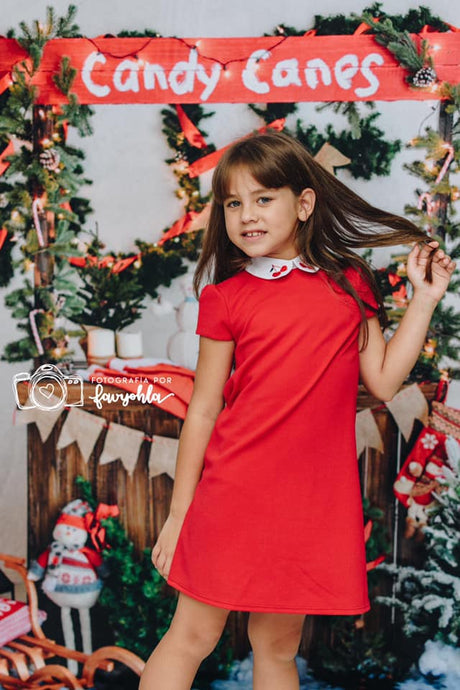 Kate Christmas Candy Canes with Decorations Backdrop for Photography
