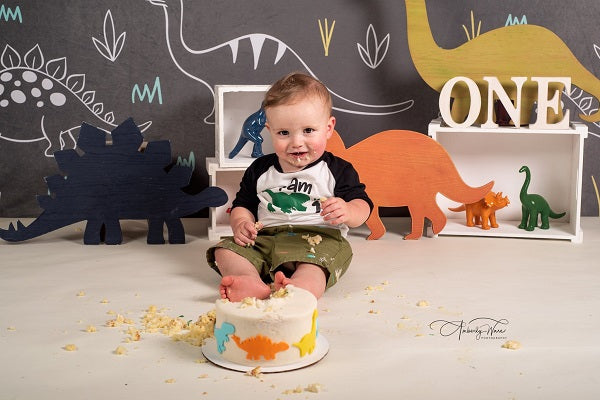 Kate Gray and White Small Dinosaur Backdrop for Children Photography Designed by Amanda Moffatt