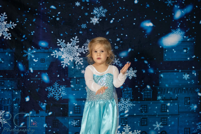 Kate Winter Frozen Castle Backdrop for Photography Designed by JFCC