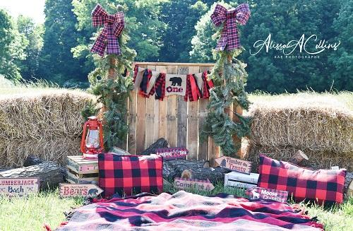 Kate Summer Backdrop Lumber Jack Submitt Designed by AAE Photography