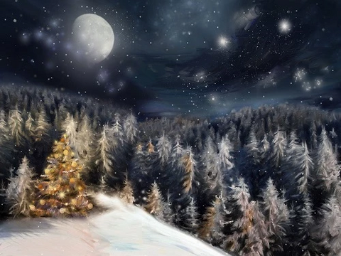 Winter Dream Christmas Night Trees Backdrop