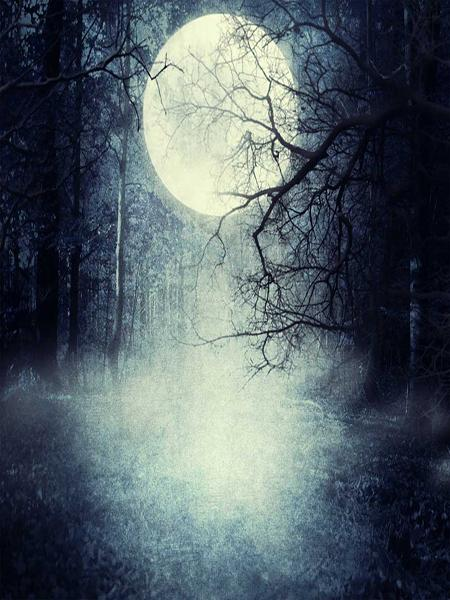 Kate Ghastly Moon Night Forest Backdrop Moon in Night Forest - Kate backdrops UK