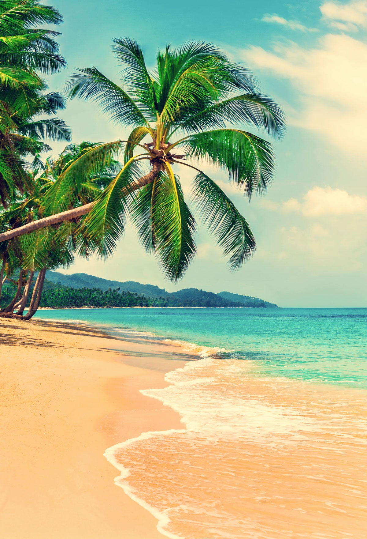 Load image into Gallery viewer, Kate Sea Summer Holiday Beach with Coconut tree Photography Backdrop