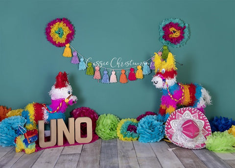 Kate 1st Birthday Party with Colorful Decoration Backdrop for Photography Designed by Cassie Christiansen