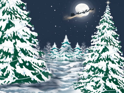 Winter Christmas Night Children Backdrop