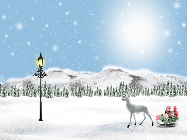 Kate Christmas  Winter Snow Mountain Background Backdrop for Photography - Kate backdrops UK