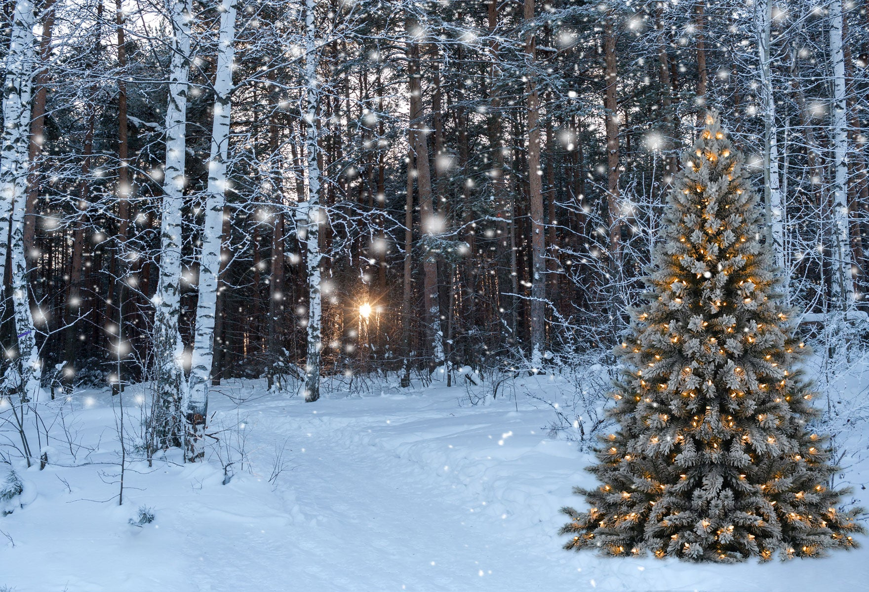 Load image into Gallery viewer, Kate Christmas Tree in snow Backdrops for Photography