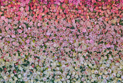 Kate Wedding Flower Wall Photo Backdrop for Photography