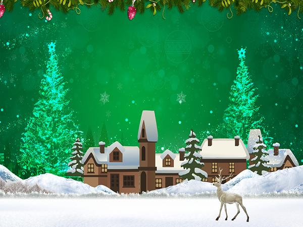 Kate Cartoon Deer Green Background Christmas Backdrop - Kate backdrops UK