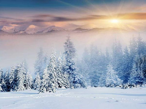 Kate Christmas Winter Outdoor Scene Sunrise Snow Photo Backdrop