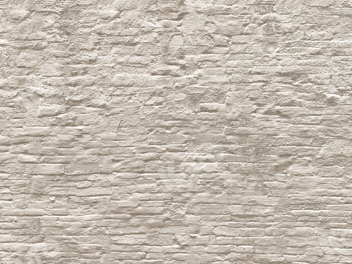 Kate White Brick Wall Backdrop Designed by Jia Chan Photography