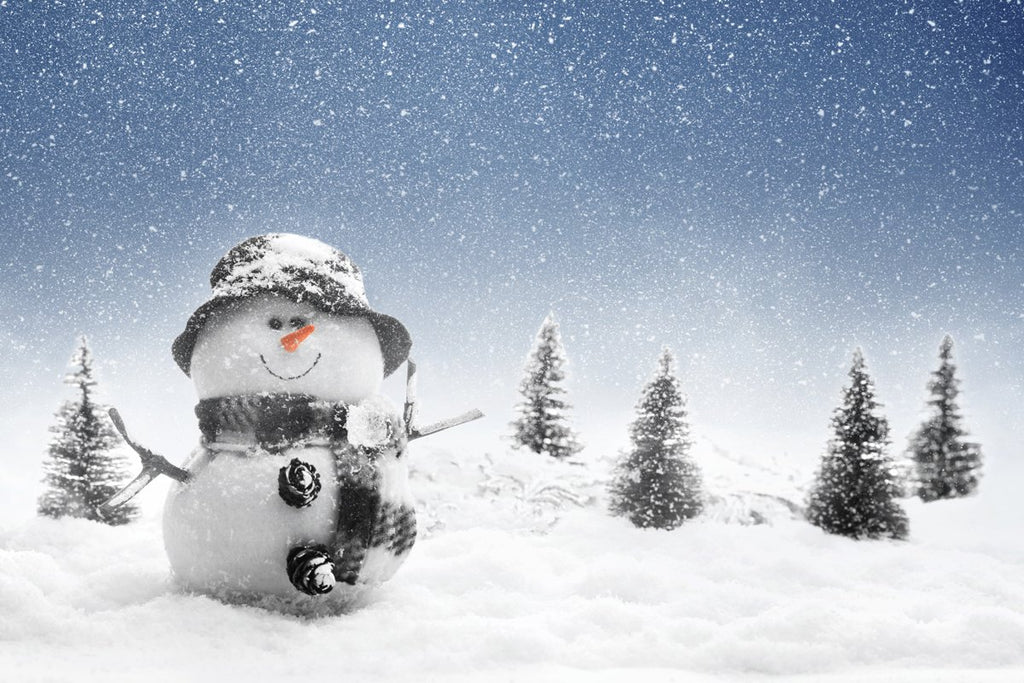 Katebackdrop£ºKate fall snow winter Christmas backdrop Snowman outdoor