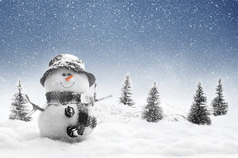 Katebackdrop:Kate fall snow winter Christmas backdrop Snowman outdoor