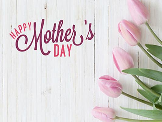 Katebackdrop Kate White Wooden Background Pink Tulip Floral Mother's Day Holiday Backdrop