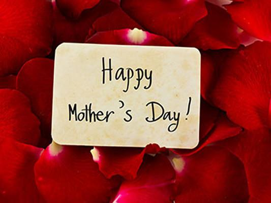 Katebackdrop Kate Red Rose Background Happy Mother's Day Card Backdrop