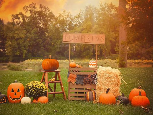Katebackdrop£ºKate Halloween Photography Backdrop For Party Pumpkins Grassland