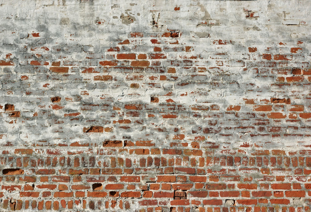 Kate Dilapidated Brick Wall Backdrops for Photography