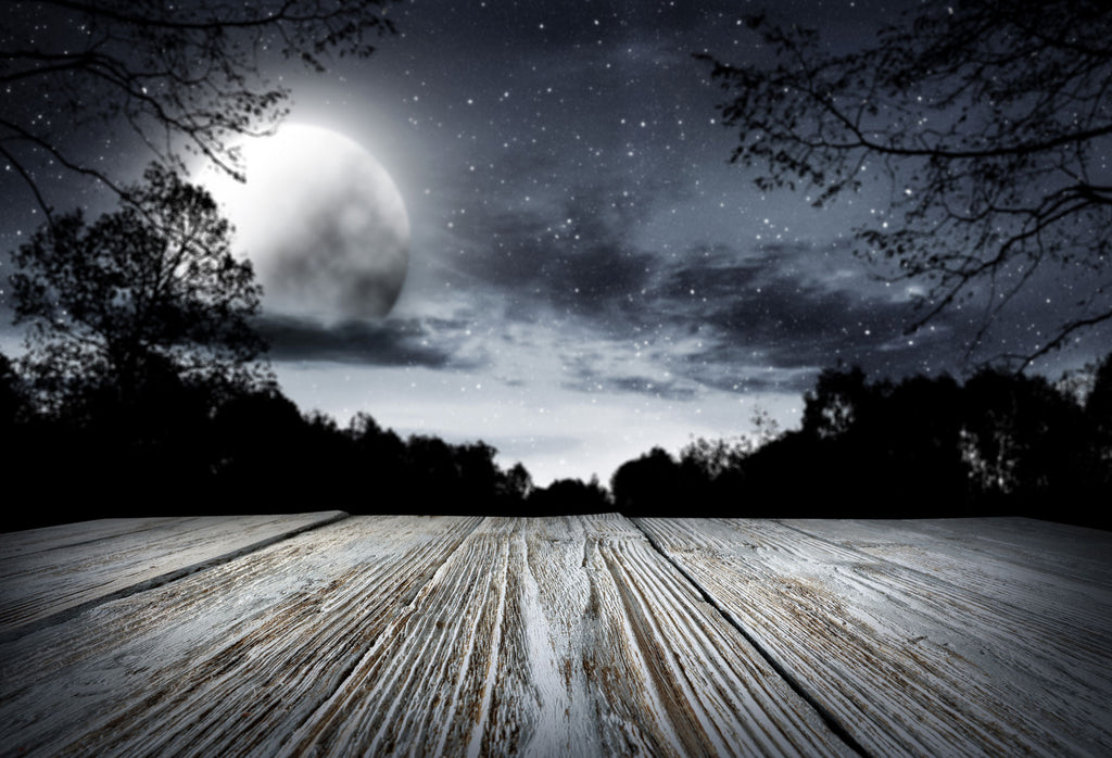 Kate Moon and Star Night Wood Backdrops for Photography