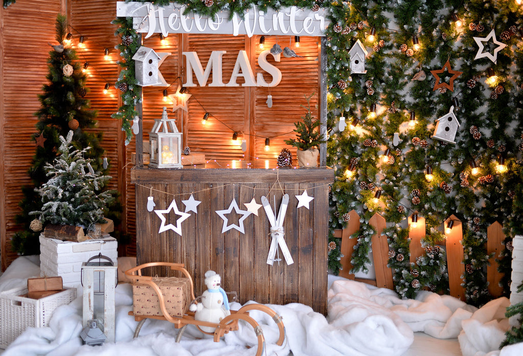 Kate Christmas Snow Backdrops For Photography