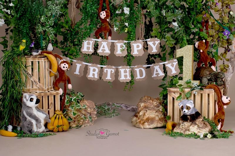 Load image into Gallery viewer, Kate Jungle cartoon zoo animals Summer backdrop 1st cake smash designed by studio gumot
