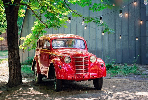 Kate Valentine's Day Vintage Red Car and Tree Backdrop for Photography