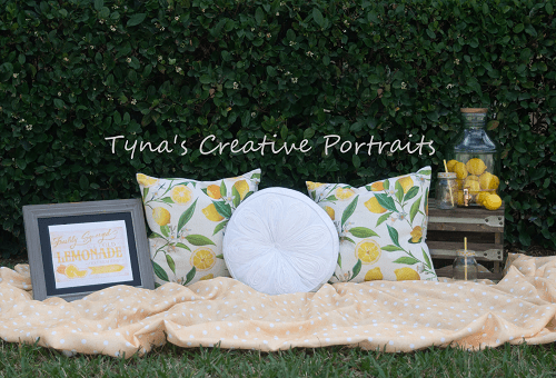 Kate Holiday Picnic Pillows Spring Backdrop for Photography Designed by Tyna Renner