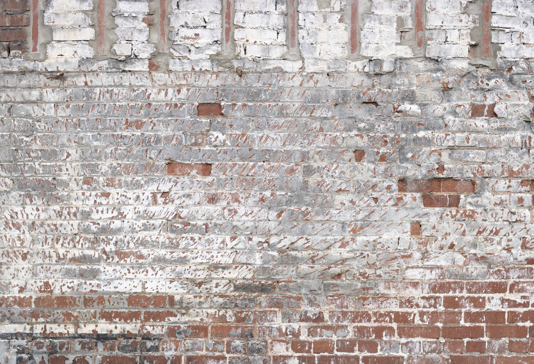Kate White Brick Wall Backdrop for Portrait Photography Designed by Erin Larkins