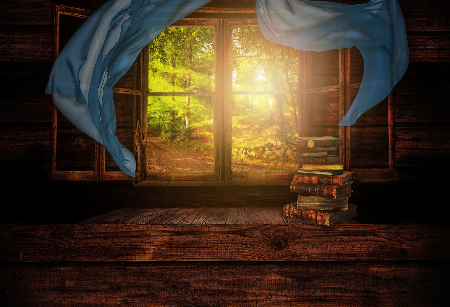 Load image into Gallery viewer, Kate Scenic Forest Outside the Window Book Backdrop for Photography Designed by Marina Smith