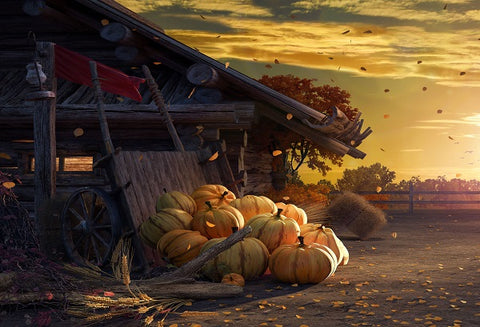 Autumn Harvest Pumpkins Sunset Fallen Leaves