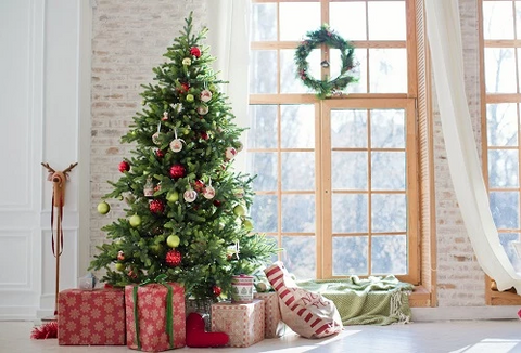 Kate Christmas Gifts Room Decoration Window View Backdrop