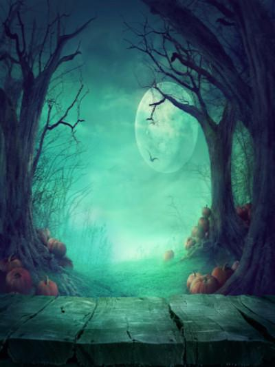Load image into Gallery viewer, Katebackdrop£ºKate Photography Fantastic Halloween Backdrops Forest Night Moon