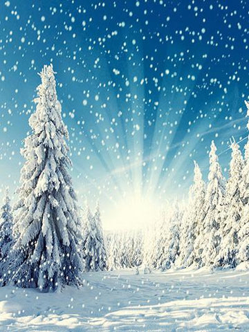 Katebackdrop:Kate Winter Scenery Forest With Snow Photography Backdrop