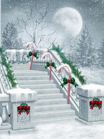 Kate Winter Scene Moon Snowflake Background Christmas