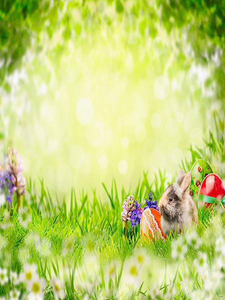 Katebackdrop£ºKate Easter Eggs Backdrop Spring Green lands rabbit Background