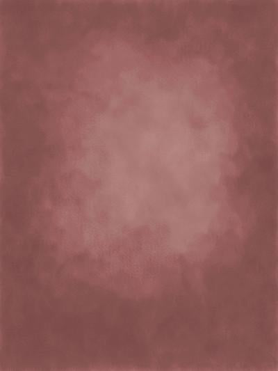 Katebackdrop£ºKate Cold Indianred Texture Abstract Oliphant Type Backdrop